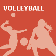TGV Icons Volleyball